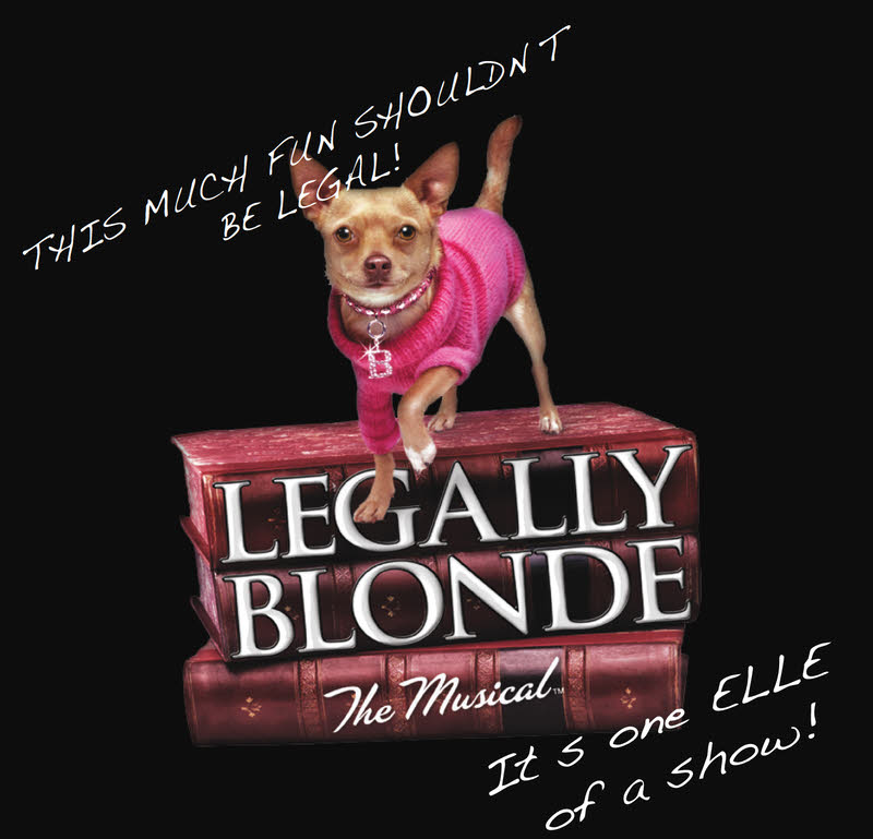 Legally Blonde at marblehead little theatre